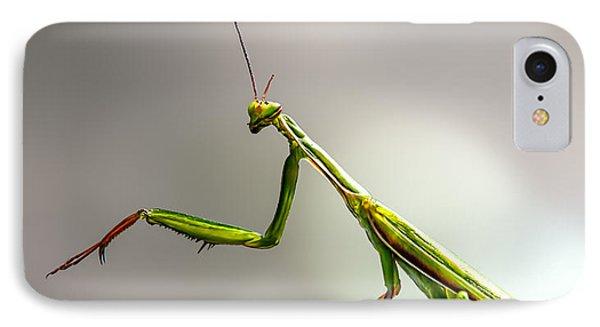 Praying Mantis  IPhone Case by Bob Orsillo