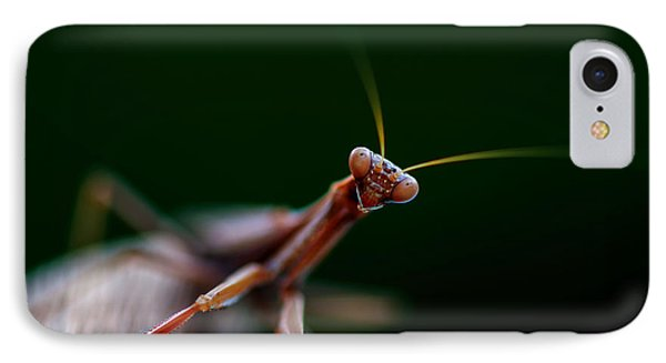 Praying Mantis IPhone Case by Rob Hemphill