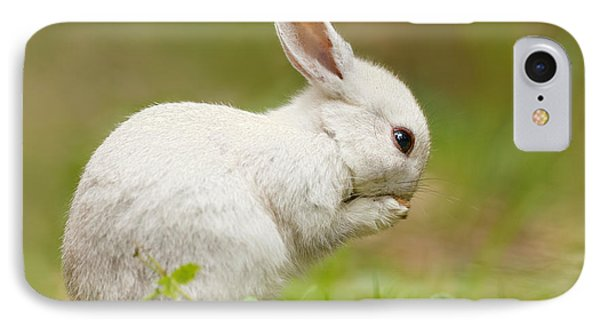 Praying White Rabbit IPhone Case by Roeselien Raimond