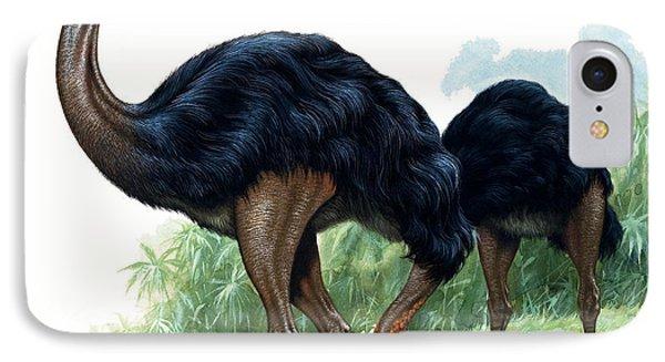 Emu iPhone 7 Case - Pre-historic Birds by David Nockels
