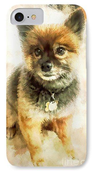 Precious Pomeranian IPhone Case by Tina LeCour
