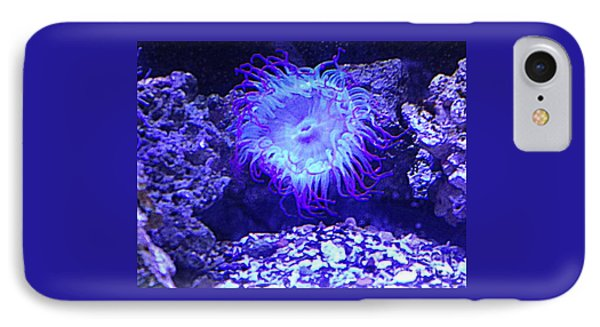 Predatory Terrestrial Sea Anemone IPhone Case by Richard W Linford