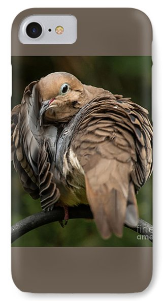 Preening Dove IPhone Case by Jim Moore