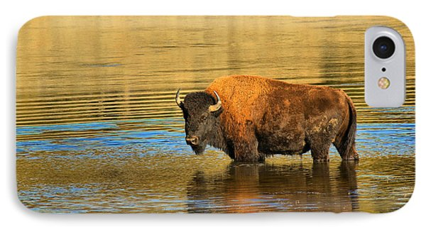 IPhone Case featuring the photograph Preparing To Swim The Yellowstone by Adam Jewell