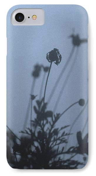 Pressed Daisy Bush Blue IPhone Case