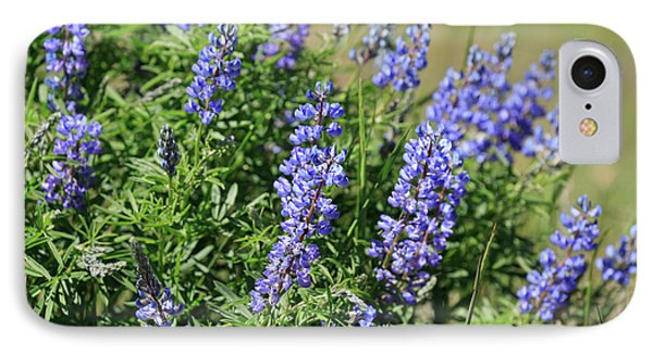 Pretty Blue Flowers Of Silky Lupine Phone Case by Louise Heusinkveld