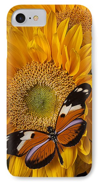 Pretty Butterfly On Sunflowers Phone Case by Garry Gay
