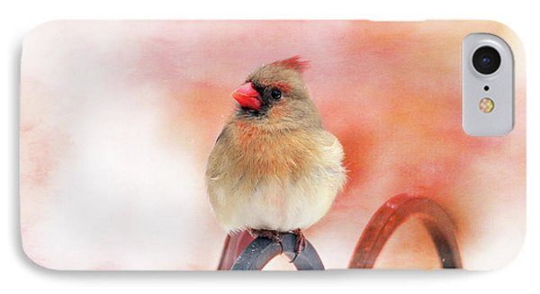 Pretty Cardinal IPhone Case by Trina Ansel