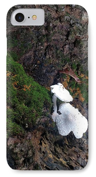 Pretty Forest Underneath  Phone Case by Steven Digman