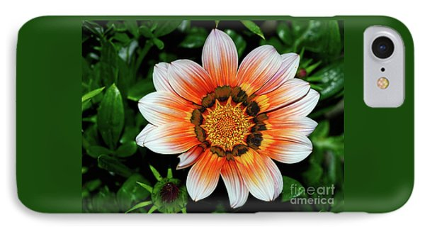 IPhone Case featuring the photograph Pretty Gazania By Kaye Menner by Kaye Menner