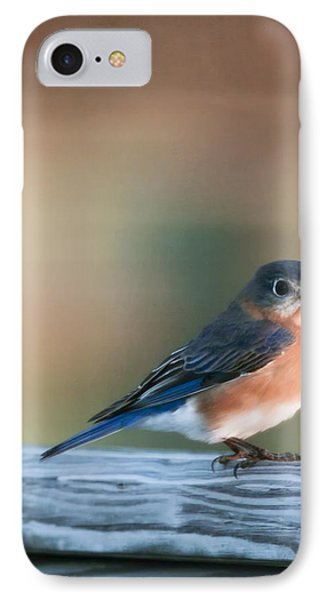 Pretty In Blue Phone Case by Phill Doherty
