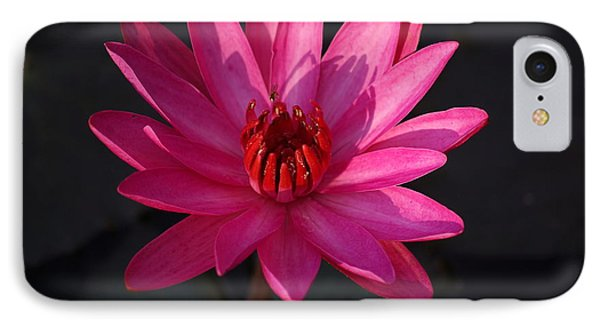 Pretty In Pink IPhone Case by John S