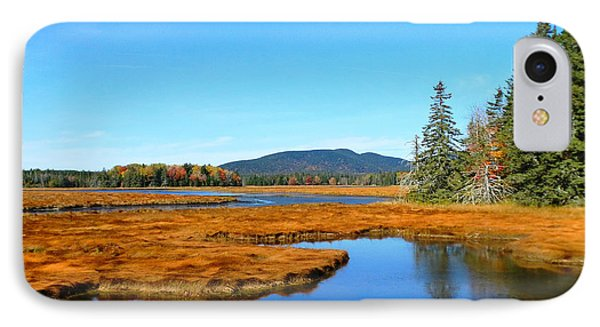 Pretty Marsh IPhone Case by Mike Breau