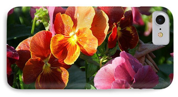 Pretty Pansies IPhone Case by Andrea Jean
