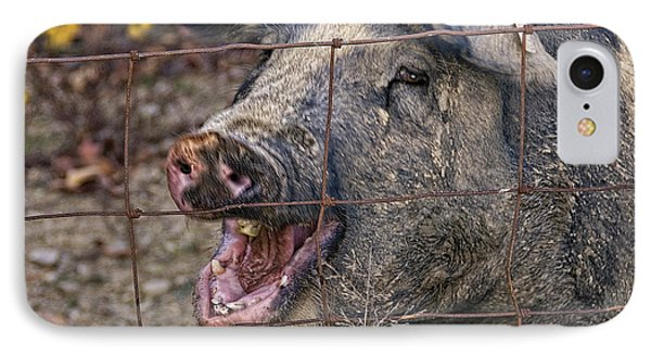 Pretty Pig IPhone Case by Timothy Flanigan and Debbie Flanigan at Nature Exposure