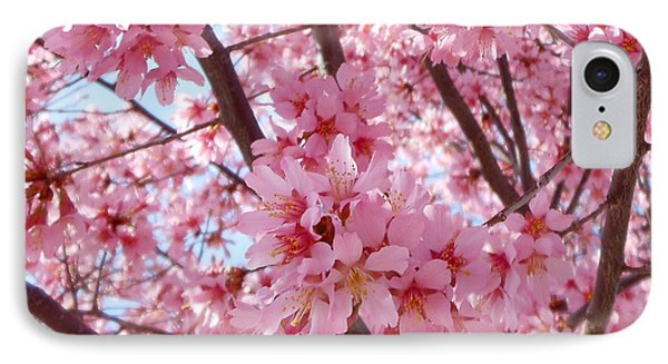 Pretty Pink Cherry Blossom Tree IPhone Case