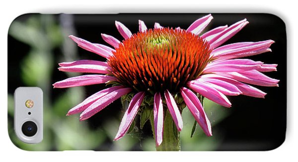 Pretty Pink Coneflower IPhone 7 Case