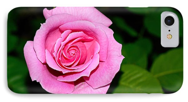 Pretty Pink Rose By Kaye Menner IPhone Case