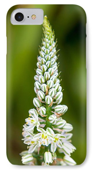 Pretty Pods IPhone Case