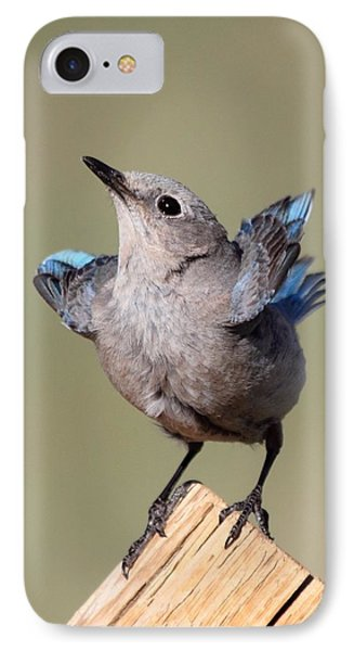 Pretty Pose IPhone Case by Shane Bechler