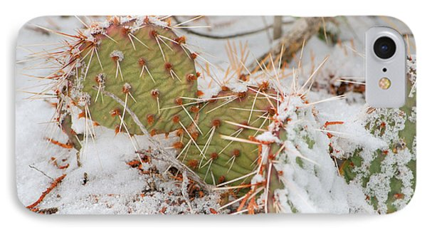 IPhone Case featuring the photograph Prickley Pear Cactus by Donna Greene