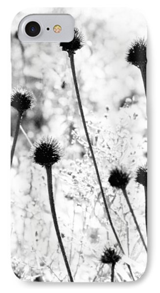 IPhone Case featuring the photograph Prickly Buds by Deborah  Crew-Johnson
