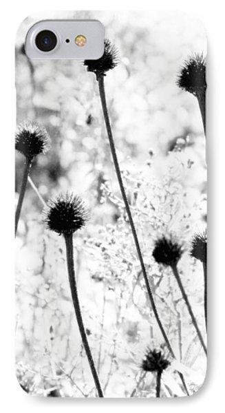 Prickly Buds IPhone Case by Deborah  Crew-Johnson