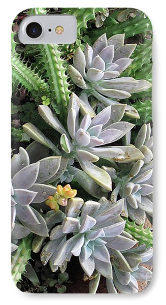 IPhone Case featuring the photograph Prickly One by Ken Frischkorn