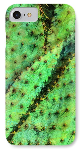 IPhone Case featuring the photograph Prickly by Paul Wear