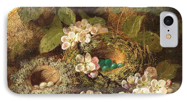 Primroses And Bird's Nests On A Mossy Bank IPhone Case by Oliver Clare