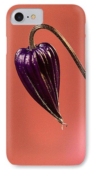 Princess Diana Clematis Blossom 2 IPhone Case by Douglas Barnett