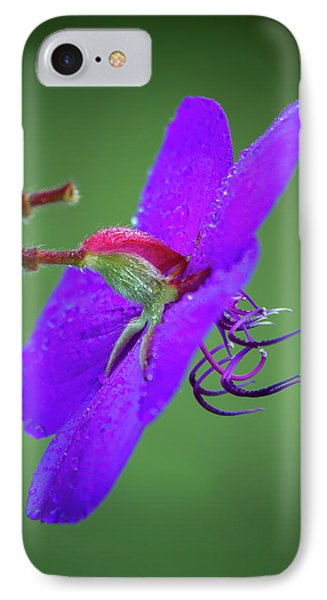 IPhone Case featuring the photograph Princess Flower, Nuwara Eliya, 2012 by Hitendra SINKAR