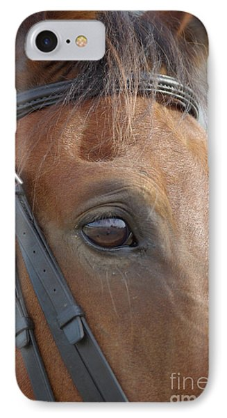 IPhone Case featuring the photograph Prinz by Jim and Emily Bush