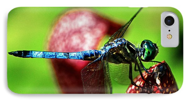 IPhone Case featuring the photograph Profile Of A Dragonfly 003 by George Bostian
