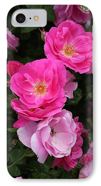 IPhone Case featuring the photograph Profusion Of Pink by Doris Potter