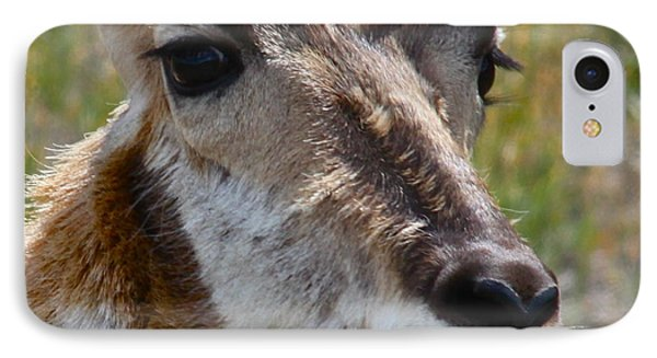 Pronghorn Buck Face Study Phone Case by Karon Melillo DeVega