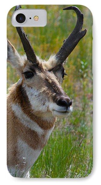 Pronghorn Buck Phone Case by Karon Melillo DeVega