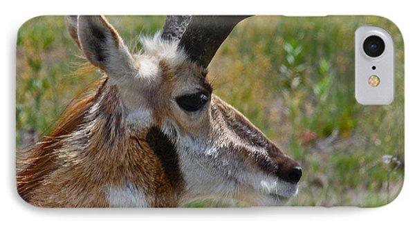 Pronghorn Buck Profile Phone Case by Karon Melillo DeVega