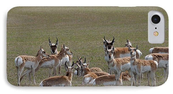 IPhone Case featuring the photograph Pronghorns On Alert by Kae Cheatham