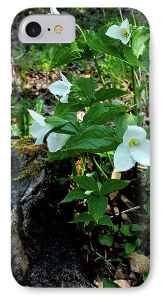 IPhone Case featuring the photograph Protected Wild Trillium  by LeeAnn McLaneGoetz McLaneGoetzStudioLLCcom
