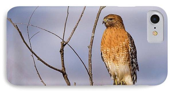 Proud Profile IPhone Case by Charles Hite