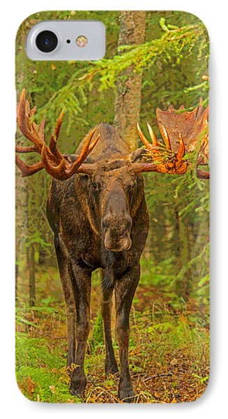 Prowling Through The Forest Abstract IPhone Case by Tim Grams