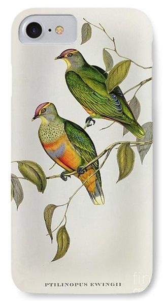 Ptilinopus Ewingii Phone Case by John Gould