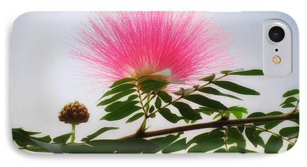 Puff Of Pink - Mimosa Flower IPhone Case
