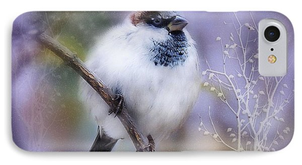 Puffball  IPhone Case by Elaine Manley