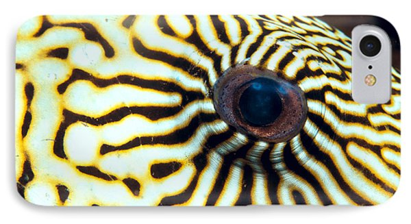 Pufferfish Phone Case by Dave Fleetham - Printscapes