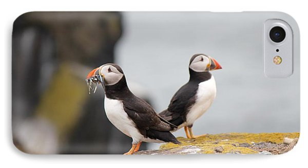 IPhone Case featuring the photograph Puffin's by David Grant