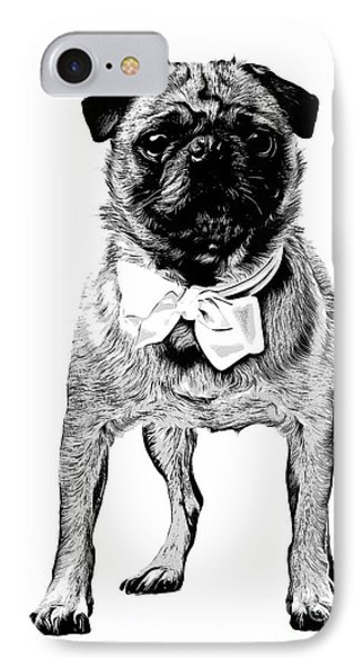 Pug IPhone Case by Edward Fielding