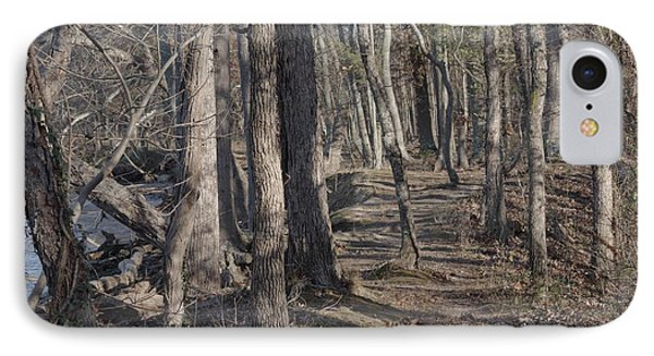 Pumpkin Ash Trail IPhone Case