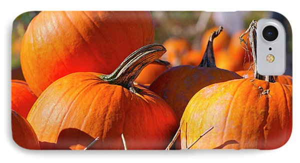 IPhone Case featuring the photograph Pumpkins 2 by Sharon Talson